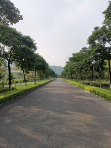 茂名道路景观